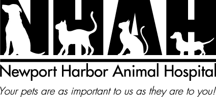 Newport Harbor Animal Hospital
