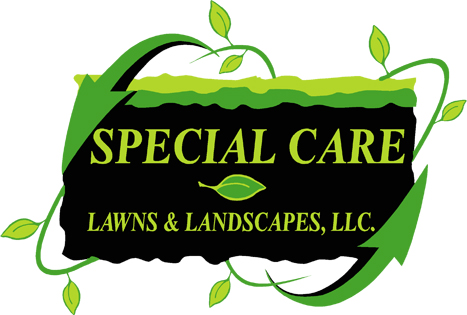 Special Care Lawns & Landscapes